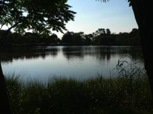 Otter Pond North