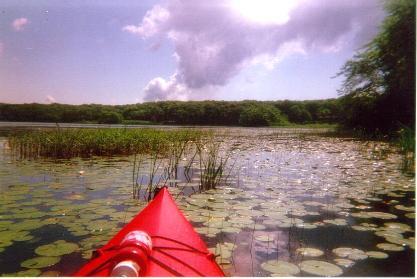 Kayak Bob Wolfram picture