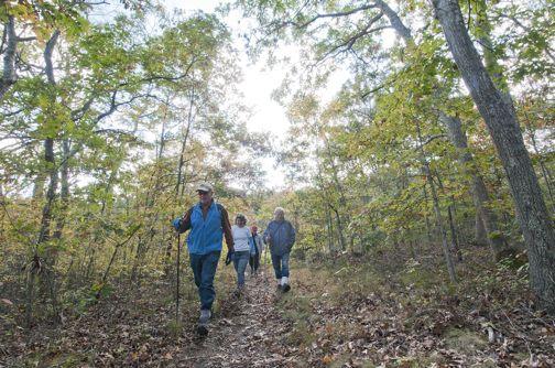Long-Pond-Greenbelt-Hike-web