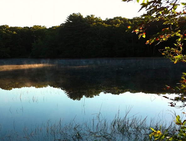 Crooked Pond